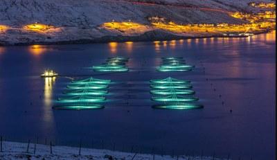 Stor økonomisk vækst og flere fattige på Færøerne