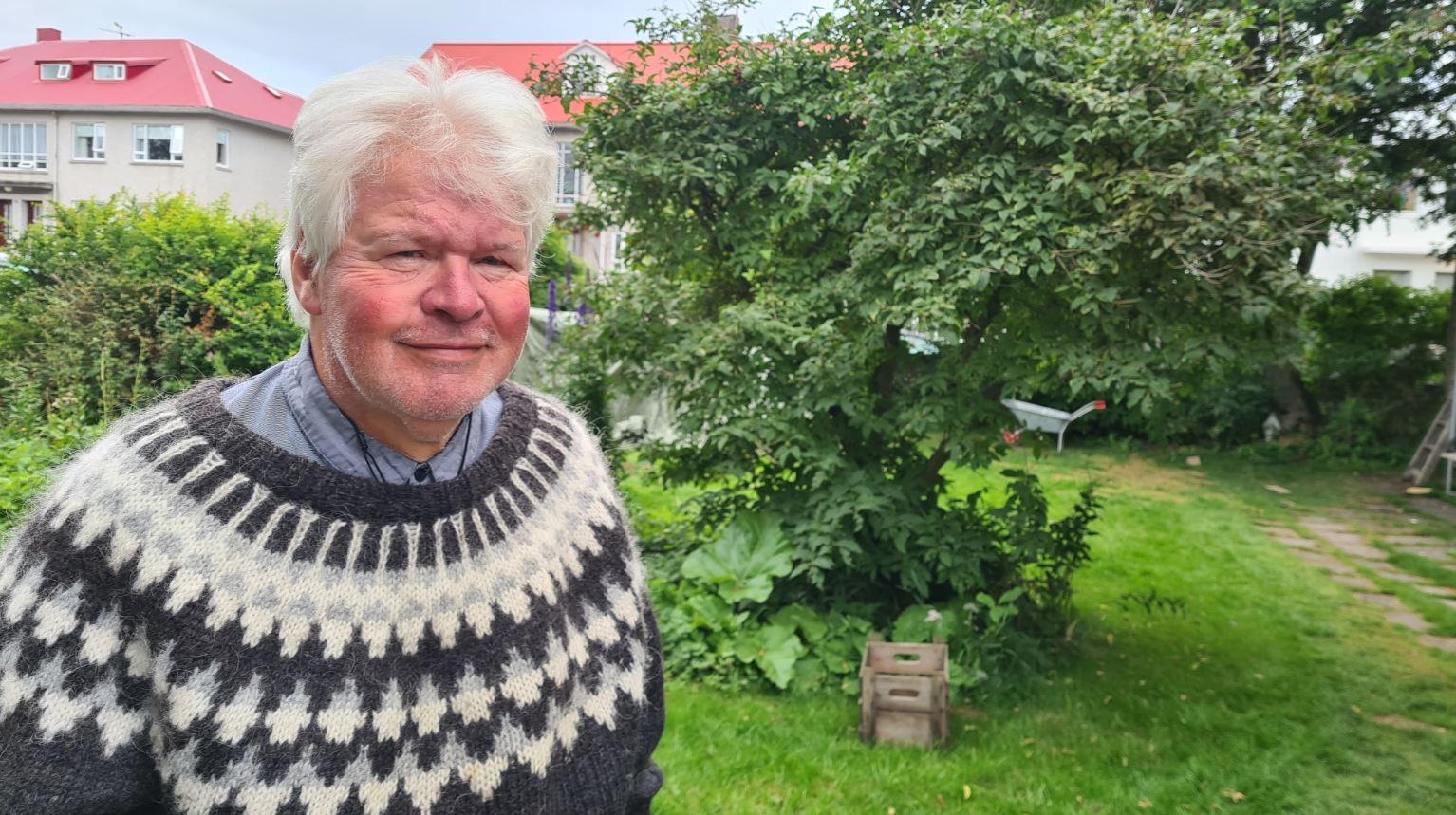 Island: Tilliten til politikere er nesten tilbake