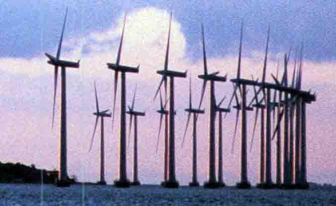 Tema: Klimatkrisen skapar nya gröna jobb