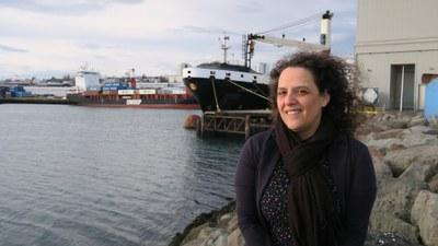 Isländska företag vill införa likalönsstandarden i förtid