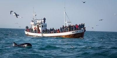 OECD: Island tjänar mer på turismen än fisket