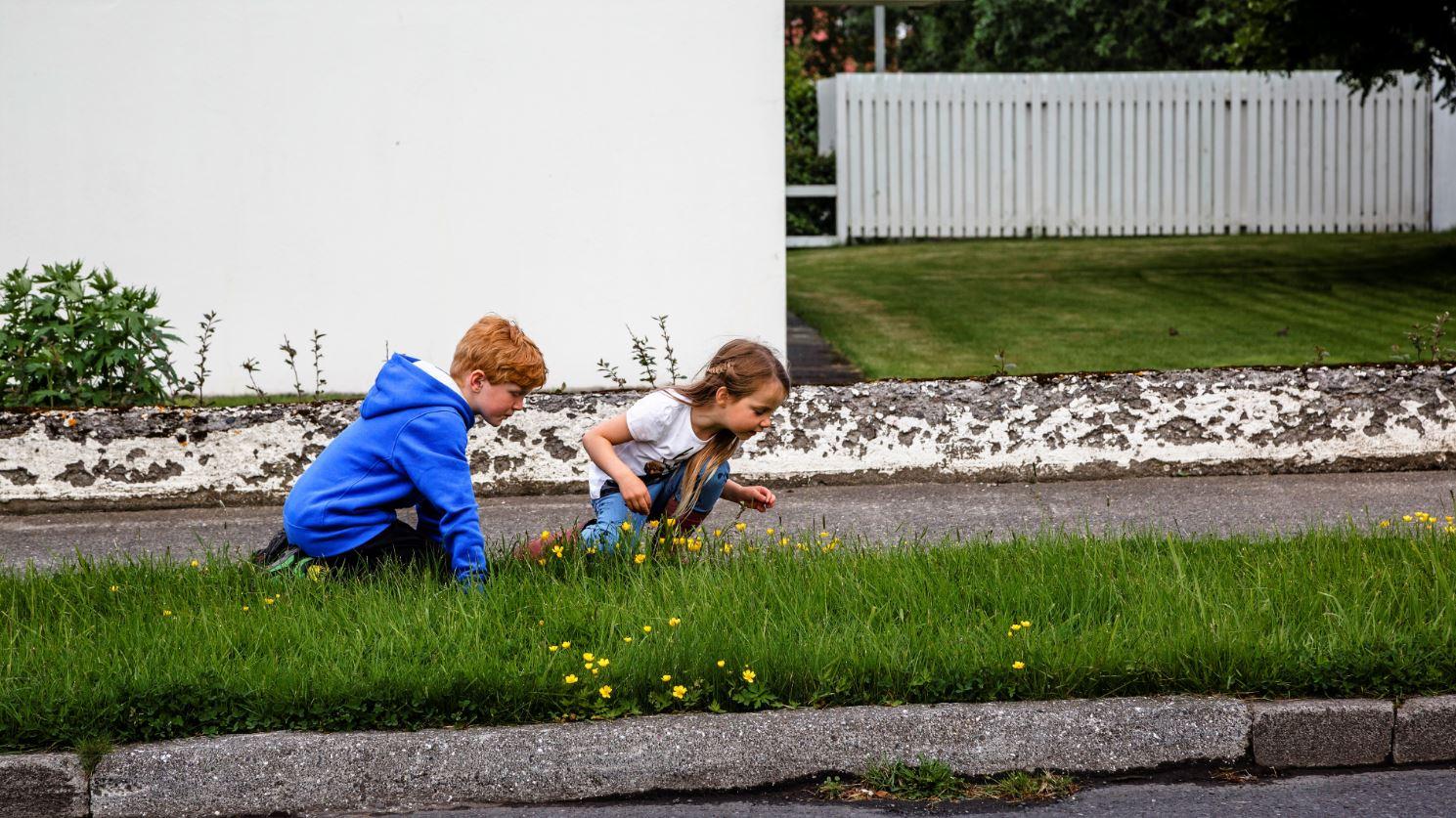 Inkomster är inte allt på lyckliga Island