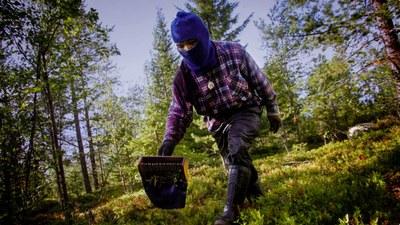 Arbetskraft en bristvara i det nordiska jord- och skogsbruket